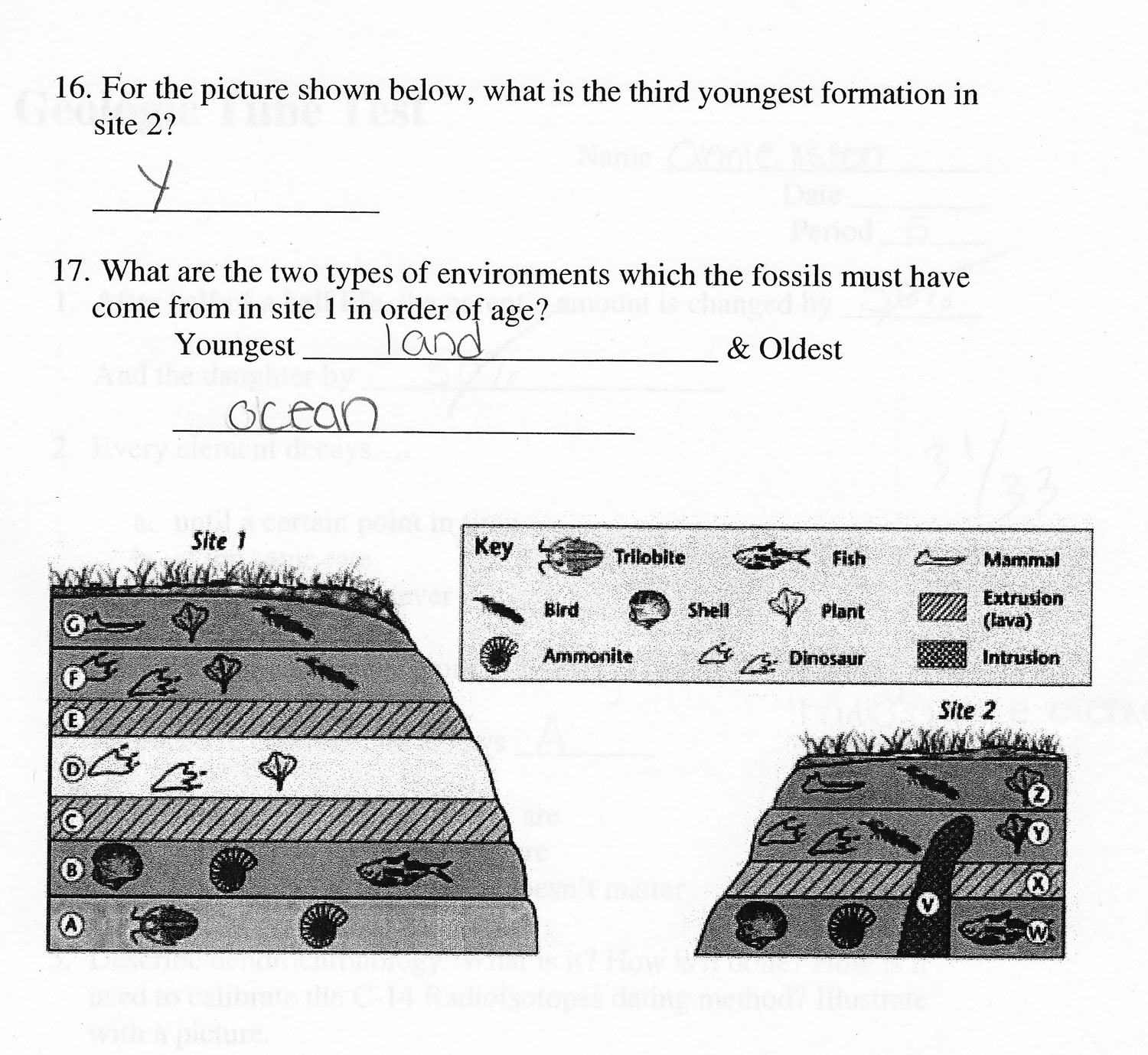 Electron spin resonance fossil dating worksheet